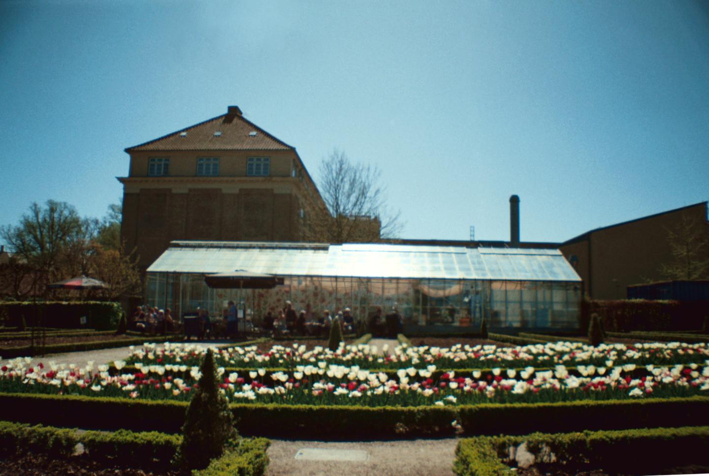 The Greenhouse in Landbohøjskolens Have Café Væksthuset Frederiksberg, København Copenhagen Copenhej