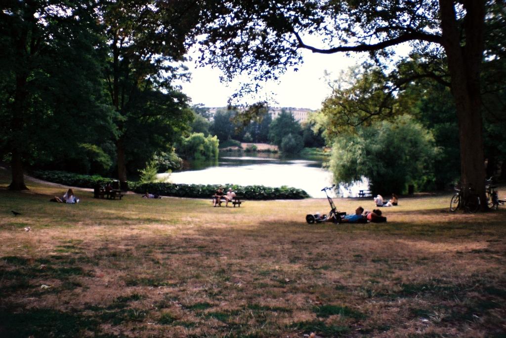 Ørstedsparken Have Greenspace Park Voldgrav Nature Nørreport København Copenhagen Copenhej